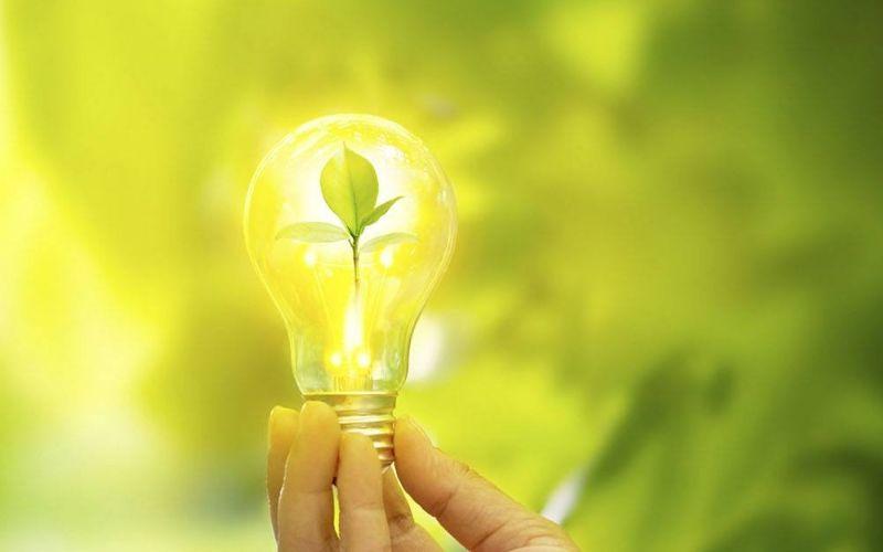 Design Sem Nome (25) - Contabilidade em Mogi das Cruzes - SP | Pontual Contabilidade - O que é um negócio sustentável?
