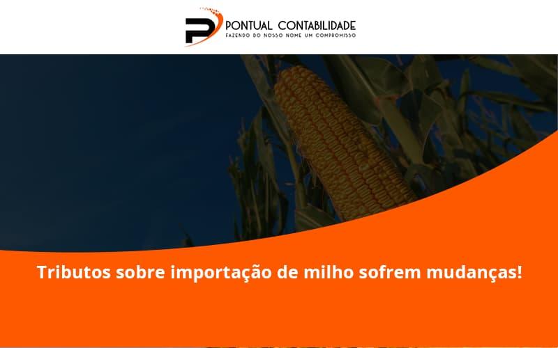 Tributos Sobre Importação De Milho Sofrem Mudanças! Pontual Contadores - Contabilidade em Mogi das Cruzes - SP   Pontual Contabilidade - Tributos sobre importação de milho sofrem mudanças!